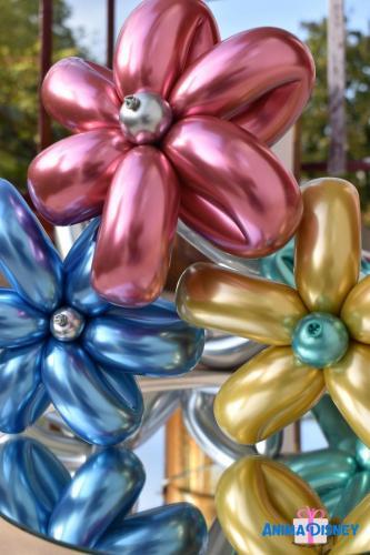 Baloane modelate AnimaDisney Iasi
