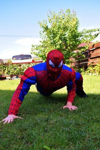 Spiderman - animator AnimaDisney